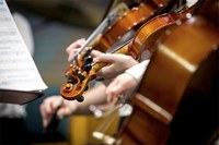 Progetti di educazione musicale, sospensione di tutte le attività formative